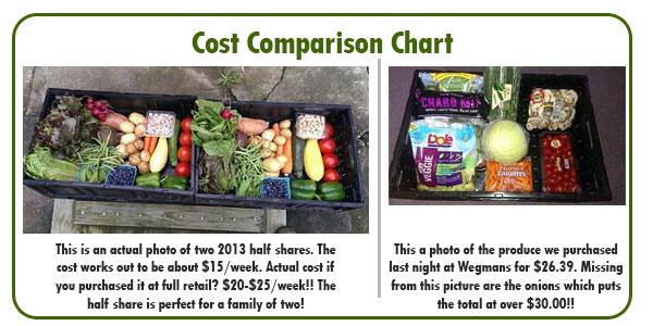 half-share-cost-chart