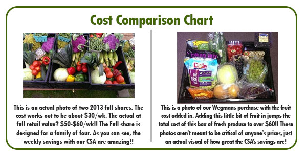 full-share-cost-chart